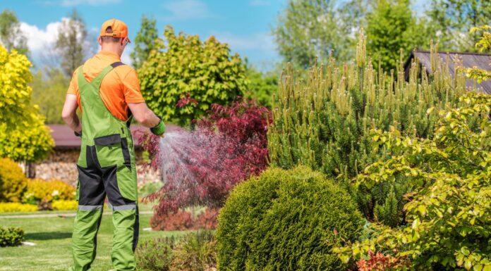 podlewanie ogrodu